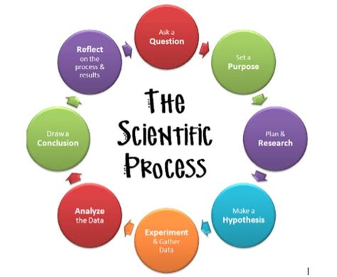 Difference Between Research Article and Review Article